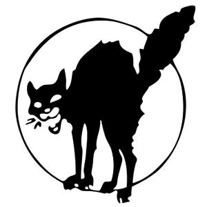 gatto nero anarchico